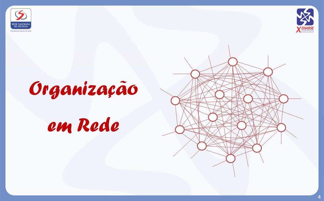 Organização em Rede 4