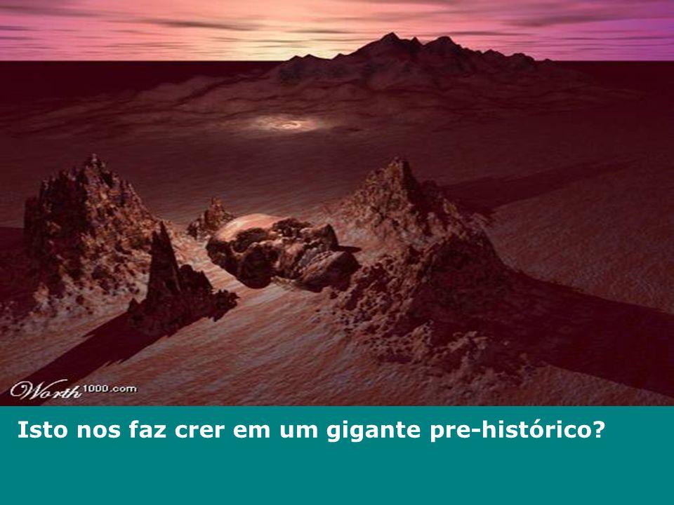 Isto nos faz crer em um gigante pre-histórico?