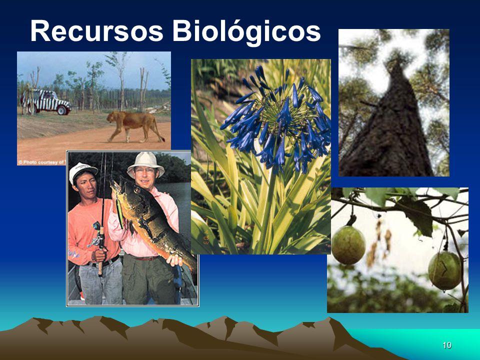 10 Recursos Biológicos
