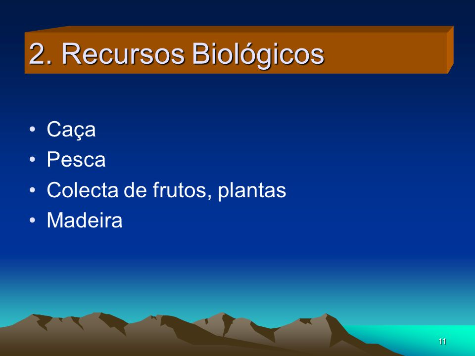 11 2. Recursos Biológicos Caça Pesca Colecta de frutos, plantas Madeira