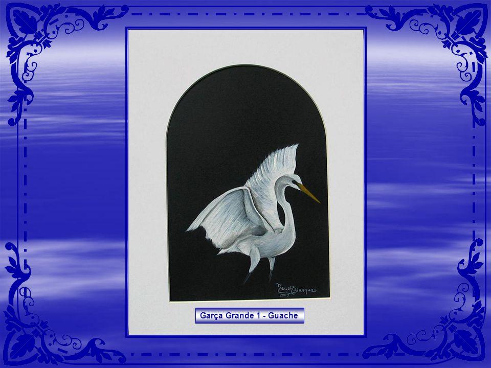Araras - Aquarela