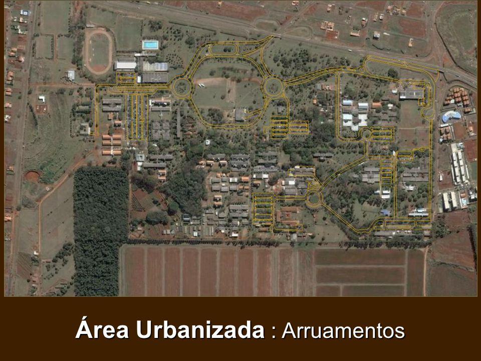 Área Urbanizada : Arruamentos