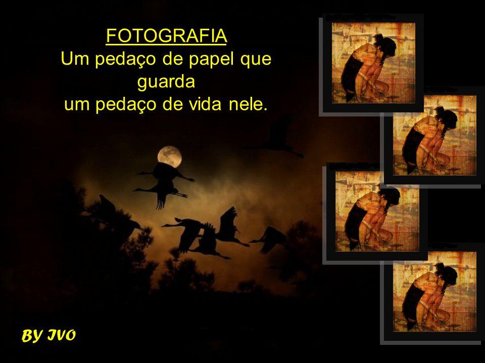 BY IVO FOTOGRAFIA Um pedaço de papel que guarda um pedaço de vida nele.