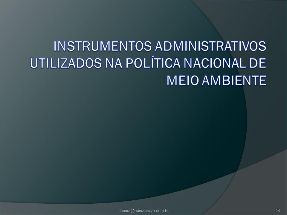 apanizi@paniziesilva.com.br18