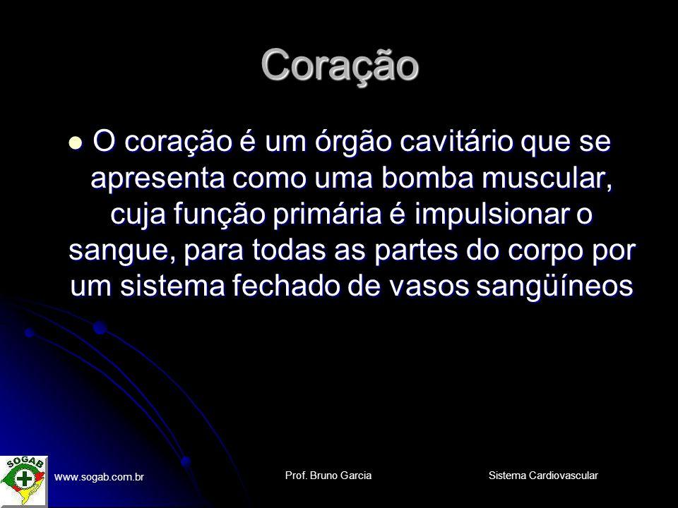 Prof. Bruno Garcia w ww.sogab.com.br Sistema Cardiovascular Válvulas