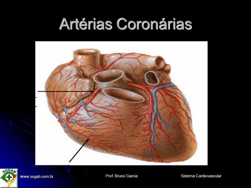 Prof. Bruno Garcia w ww.sogab.com.br Sistema Cardiovascular Artérias Coronárias