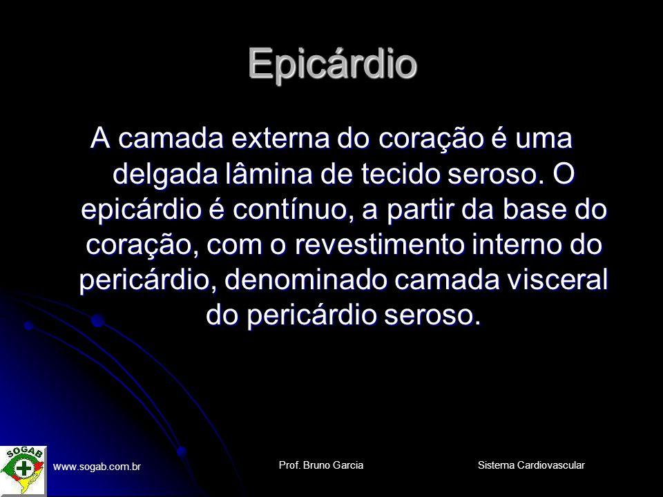 Prof. Bruno Garcia w ww.sogab.com.br Sistema Cardiovascular Arco da Aorta