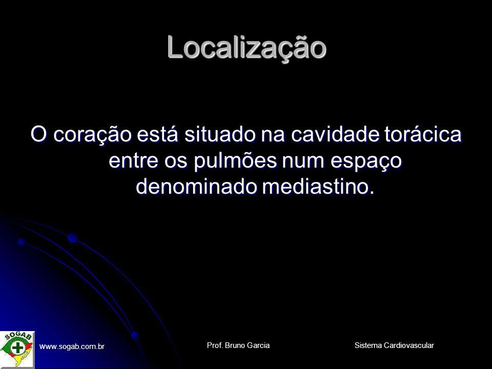 Prof. Bruno Garcia w ww.sogab.com.br Sistema Cardiovascular