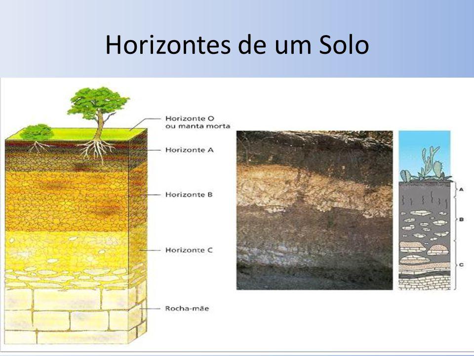 Horizontes de um Solo