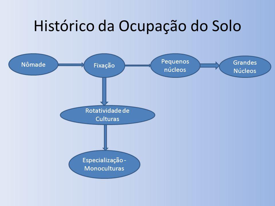 Histórico da Ocupação do Solo Nômade Fixação Pequenos núcleos Grandes Núcleos Rotatividade de Culturas Especialização - Monoculturas