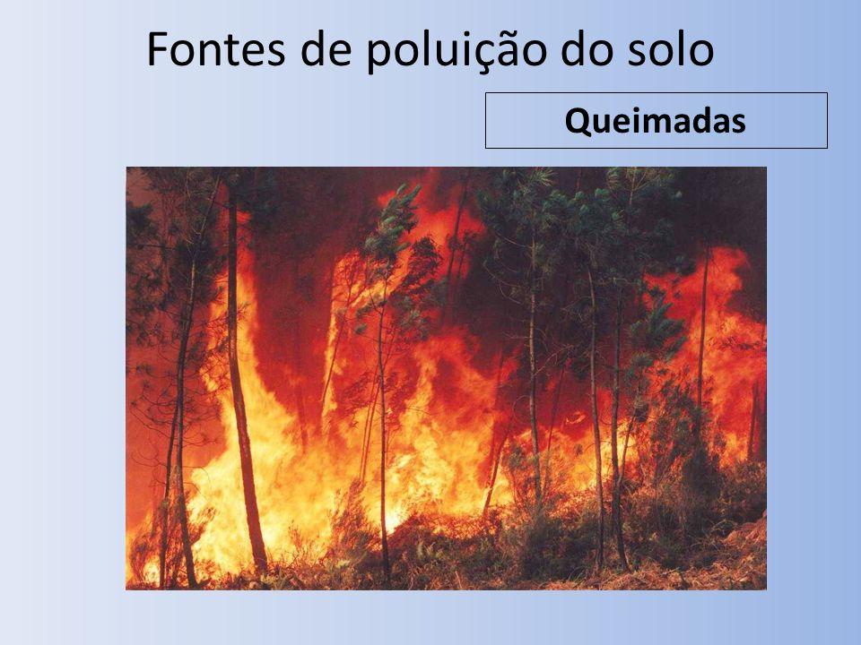 Fontes de poluição do solo Queimadas