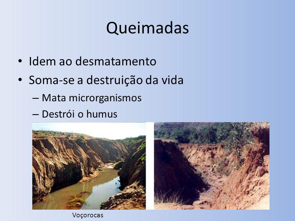 Idem ao desmatamento Soma-se a destruição da vida – Mata microrganismos – Destrói o humus Voçorocas