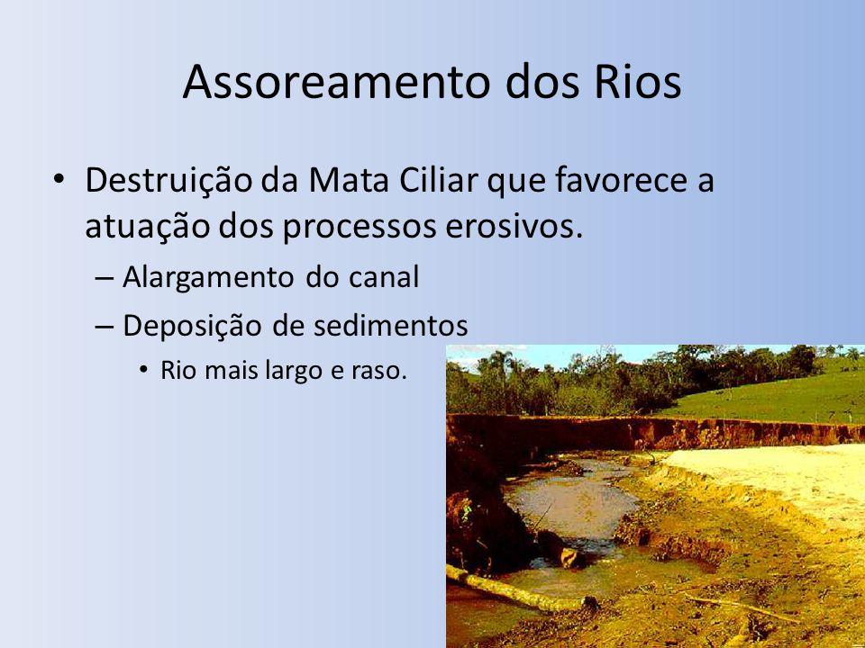 Assoreamento dos Rios Destruição da Mata Ciliar que favorece a atuação dos processos erosivos.
