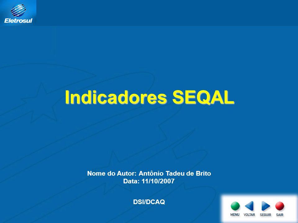 Nome do Autor: Antônio Tadeu de Brito Data: 11/10/2007 DSI/DCAQ Indicadores SEQAL