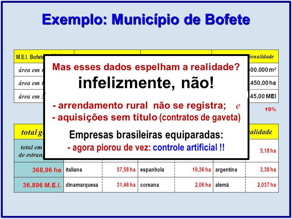 total geral total de área registrada em nome de estrangeiros por nacionalidade total em poder de estrangeiros portuguesa23,29 halibanesa224,60 hajapon