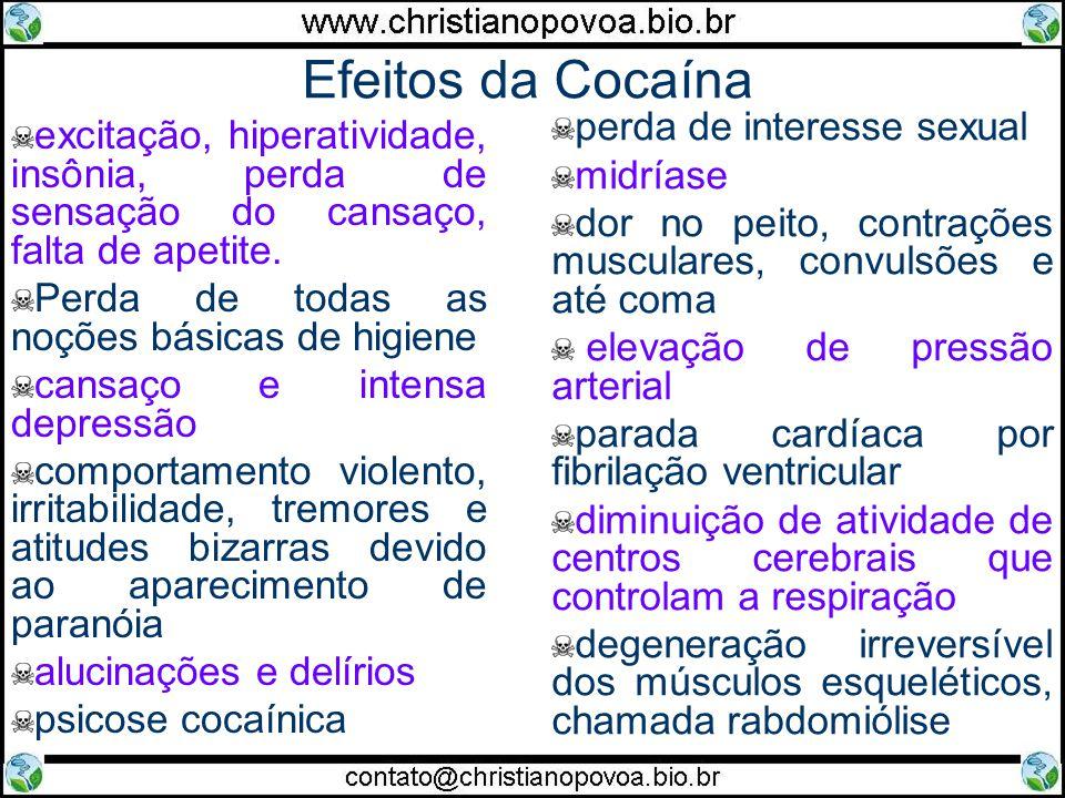 Efeitos da Cocaína excitação, hiperatividade, insônia, perda de sensação do cansaço, falta de apetite. Perda de todas as noções básicas de higiene can