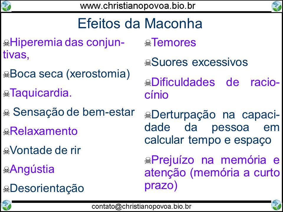 Efeitos da Maconha Hiperemia das conjun- tivas, Boca seca (xerostomia) Taquicardia. Sensação de bem-estar Relaxamento Vontade de rir Angústia Desorien