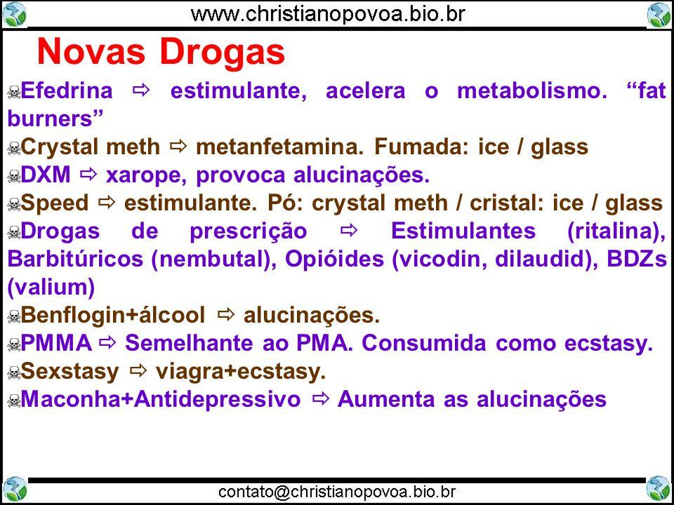 Novas Drogas Efedrina estimulante, acelera o metabolismo. fat burners Crystal meth metanfetamina. Fumada: ice / glass DXM xarope, provoca alucinações.