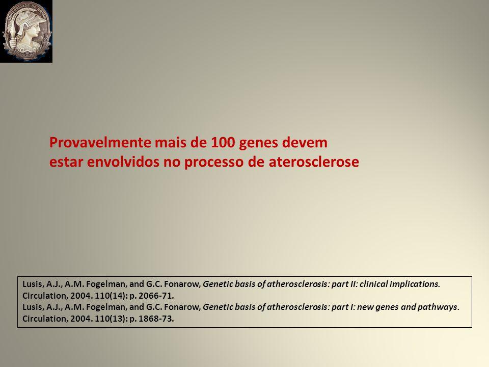 Provavelmente mais de 100 genes devem estar envolvidos no processo de aterosclerose Lusis, A.J., A.M.