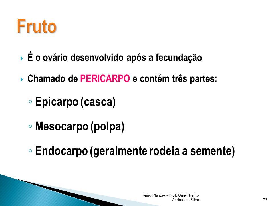 É o ovário desenvolvido após a fecundação Chamado de PERICARPO e contém três partes: Epicarpo (casca) Mesocarpo (polpa) Endocarpo (geralmente rodeia a