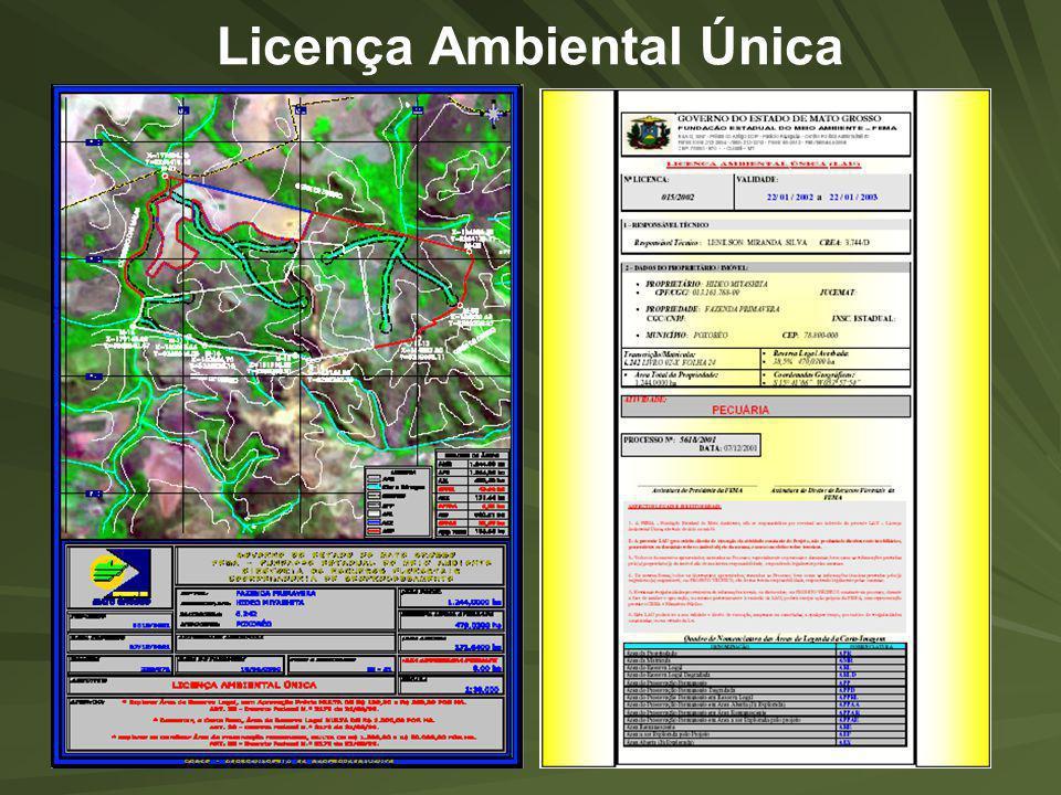 Licença Ambiental Única