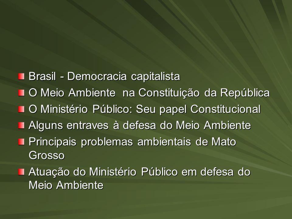 Brasil - Democracia capitalista O Meio Ambiente na Constituição da República O Ministério Público: Seu papel Constitucional Alguns entraves à defesa d