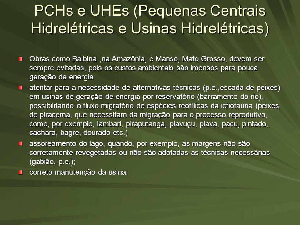 PCHs e UHEs (Pequenas Centrais Hidrelétricas e Usinas Hidrelétricas) Obras como Balbina,na Amazônia, e Manso, Mato Grosso, devem ser sempre evitadas,