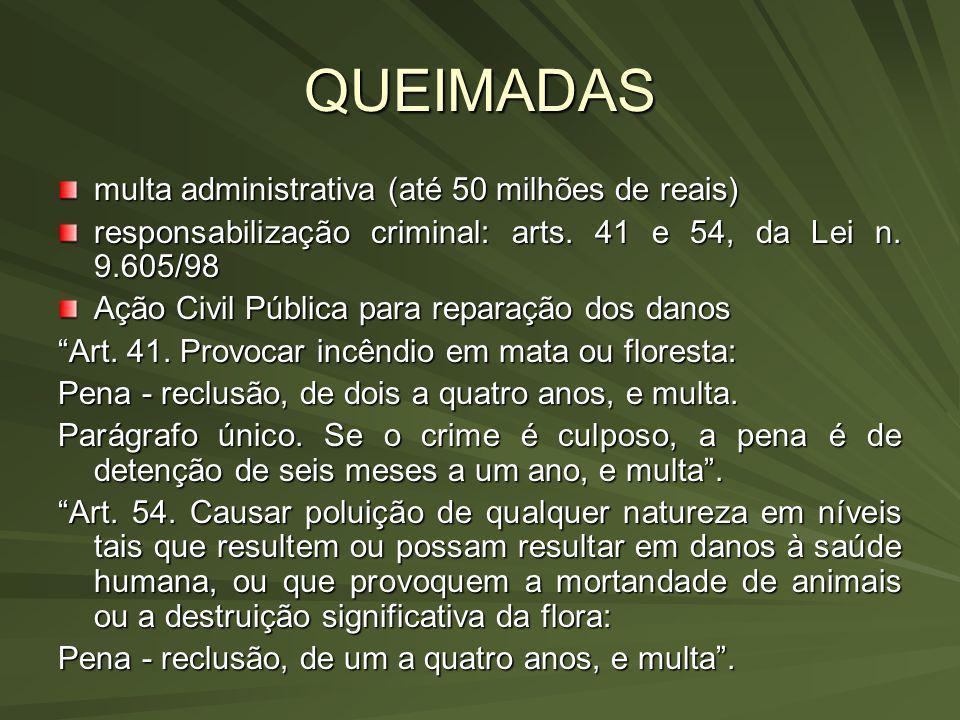 QUEIMADAS multa administrativa (até 50 milhões de reais) responsabilização criminal: arts. 41 e 54, da Lei n. 9.605/98 Ação Civil Pública para reparaç