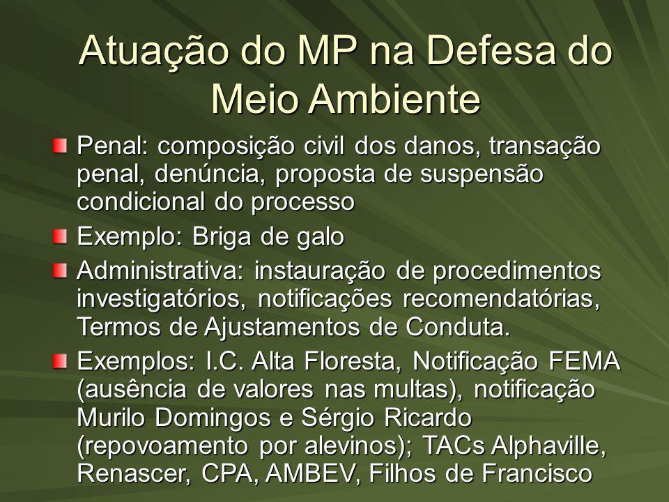 Atuação do MP na Defesa do Meio Ambiente Penal: composição civil dos danos, transação penal, denúncia, proposta de suspensão condicional do processo E