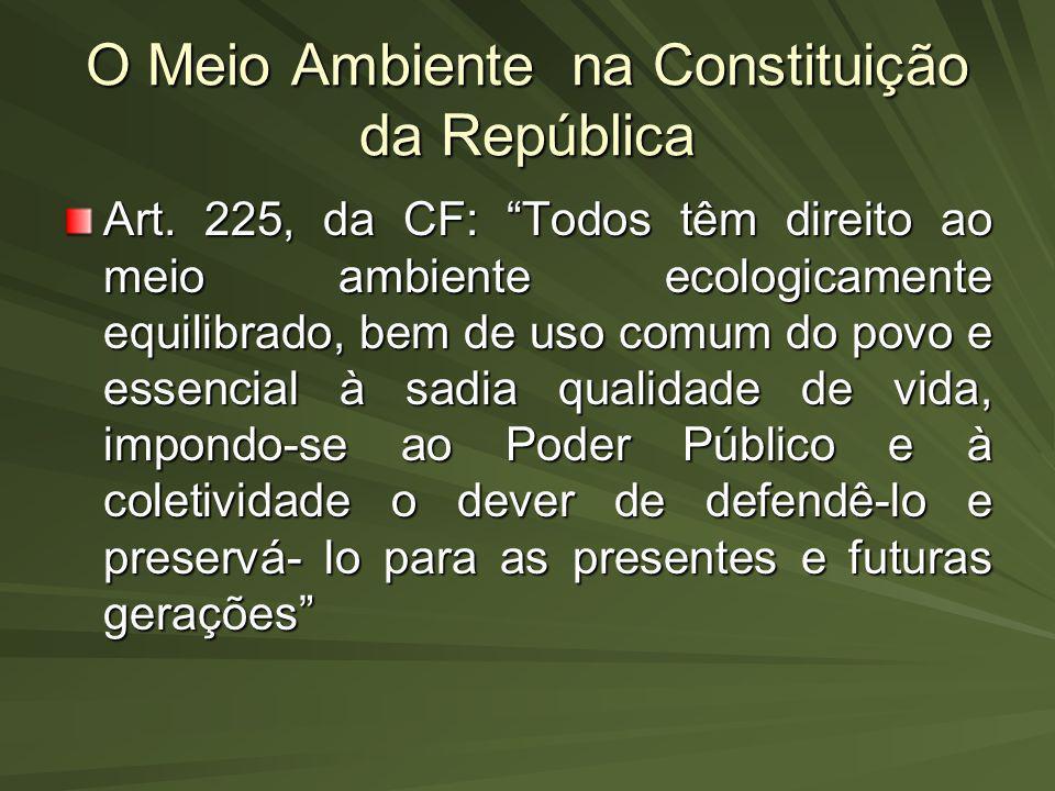 O Meio Ambiente na Constituição da República Art. 225, da CF: Todos têm direito ao meio ambiente ecologicamente equilibrado, bem de uso comum do povo