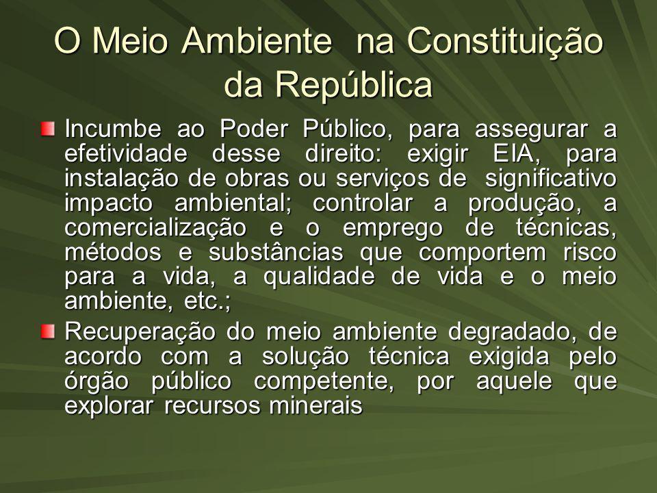 O Meio Ambiente na Constituição da República Incumbe ao Poder Público, para assegurar a efetividade desse direito: exigir EIA, para instalação de obra