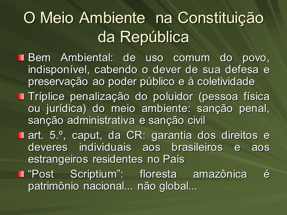 O Meio Ambiente na Constituição da República Bem Ambiental: de uso comum do povo, indisponível, cabendo o dever de sua defesa e preservação ao poder p