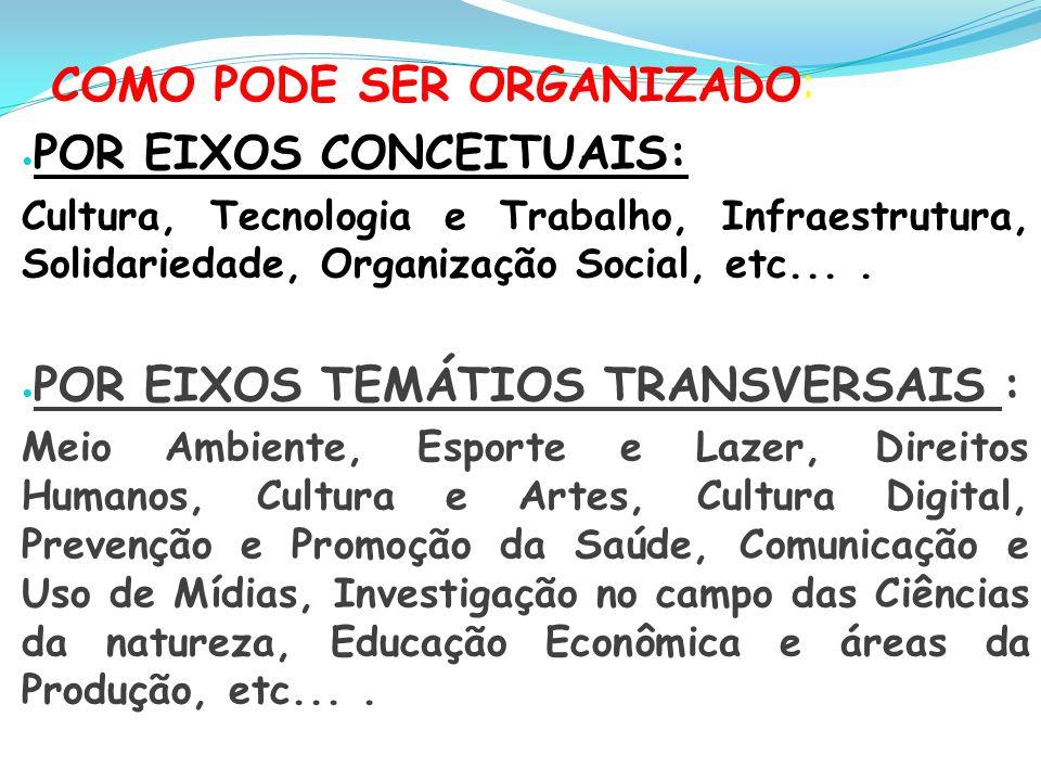 COMO PODE SER ORGANIZADO: POR EIXOS CONCEITUAIS: Cultura, Tecnologia e Trabalho, Infraestrutura, Solidariedade, Organização Social, etc.... POR EIXOS