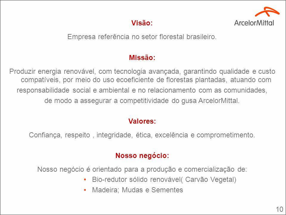 10 Visão: Empresa referência no setor florestal brasileiro. Missão: Produzir energia renovável, com tecnologia avançada, garantindo qualidade e custo