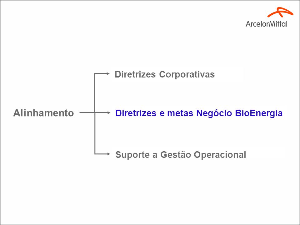 16 Contribuir para o desenvolvimento dos negócios de aço da ArcelorMittal na América do Sul suprindo a sua demanda de bio-redutor (Carvão vegetal ), energia renovável em quantidade, qualidade e custo, dentro dos princípios de sustentabilidade.
