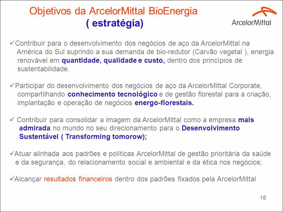 16 Contribuir para o desenvolvimento dos negócios de aço da ArcelorMittal na América do Sul suprindo a sua demanda de bio-redutor (Carvão vegetal ), e