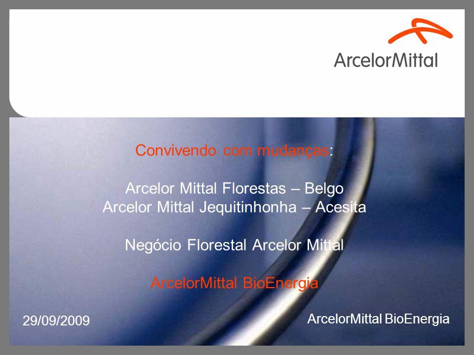 Convivendo com mudanças: Arcelor Mittal Florestas – Belgo Arcelor Mittal Jequitinhonha – Acesita Negócio Florestal Arcelor Mittal ArcelorMittal BioEne
