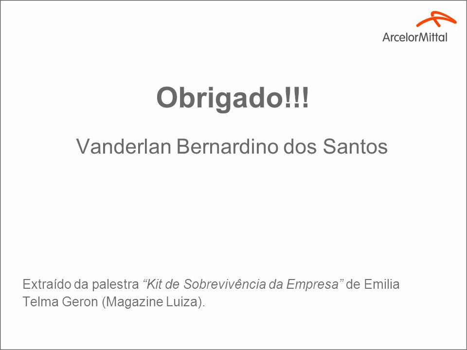 Obrigado!!! Vanderlan Bernardino dos Santos Extraído da palestra Kit de Sobrevivência da Empresa de Emilia Telma Geron (Magazine Luiza).