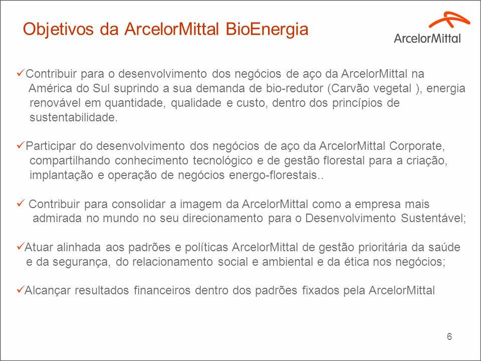 6 Contribuir para o desenvolvimento dos negócios de aço da ArcelorMittal na América do Sul suprindo a sua demanda de bio-redutor (Carvão vegetal ), en