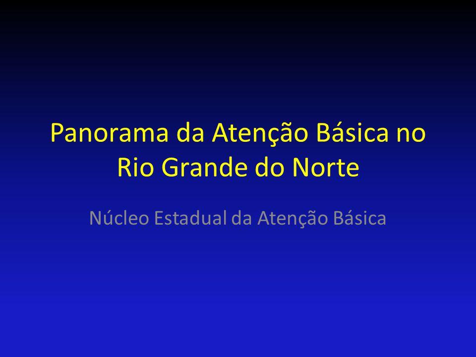 Panorama da Atenção Básica no Rio Grande do Norte Núcleo Estadual da Atenção Básica