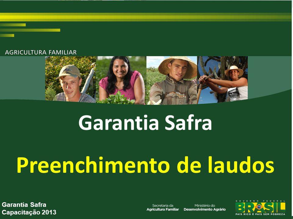 Garantia Safra Preenchimento de laudos Garantia Safra Capacitação 2013
