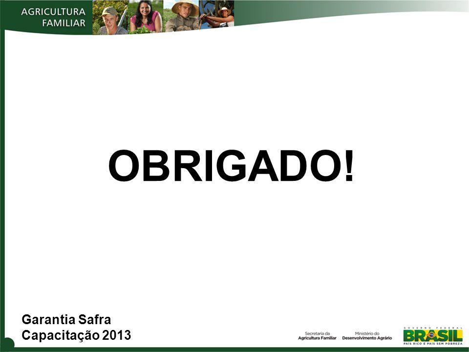 OBRIGADO! Garantia Safra Capacitação 2013