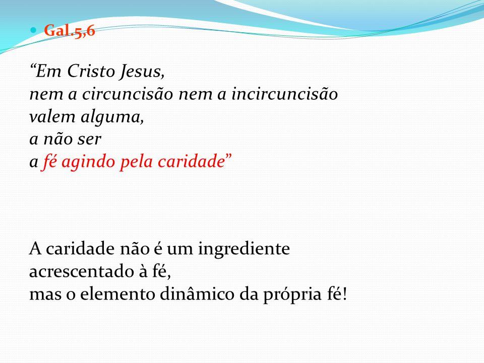 Gal.5,6 Em Cristo Jesus, nem a circuncisão nem a incircuncisão valem alguma, a não ser a fé agindo pela caridade A caridade não é um ingrediente acres