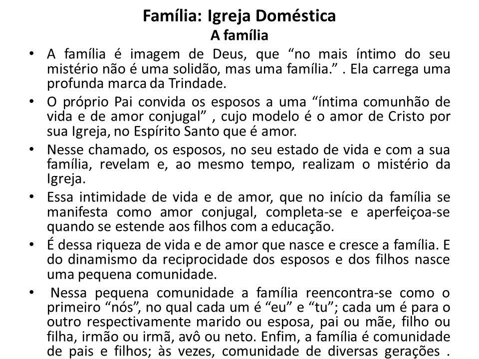 Família: Igreja Doméstica A Igreja Doméstica - O Concílio Vaticano II chama a família nascida do sacramento do Matrimônio uma espécie de Igreja doméstica e santuário íntimo da Igreja.