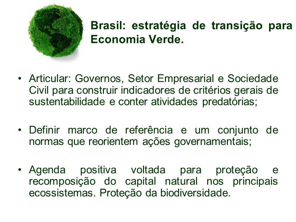 Brasil: estratégia de transição para Economia Verde. Articular: Governos, Setor Empresarial e Sociedade Civil para construir indicadores de critérios