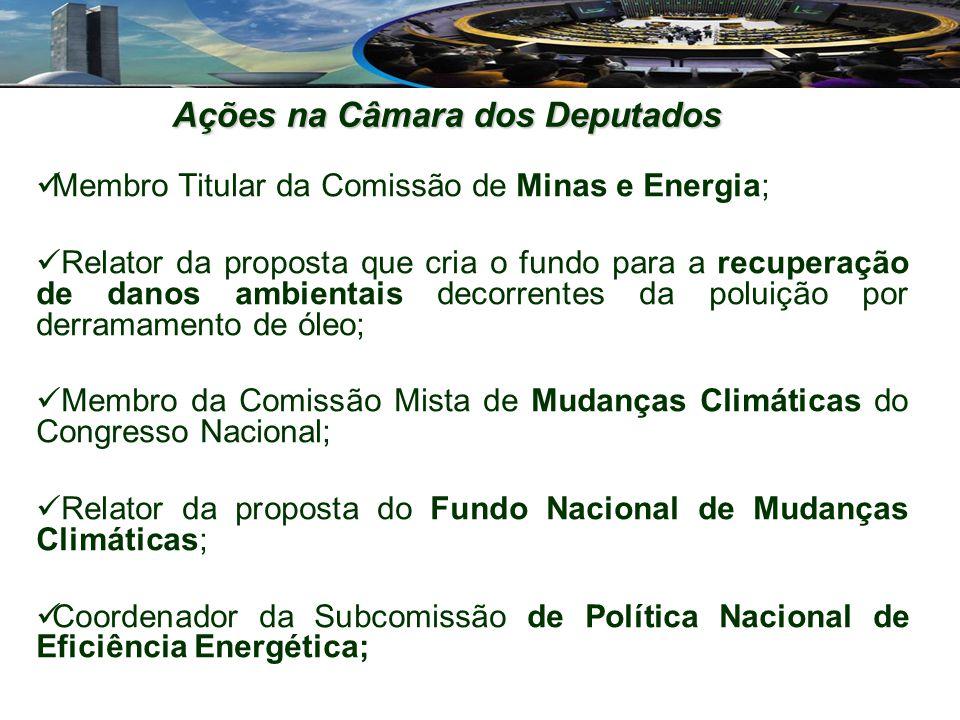 Membro Titular da Comissão de Minas e Energia; Relator da proposta que cria o fundo para a recuperação de danos ambientais decorrentes da poluição por