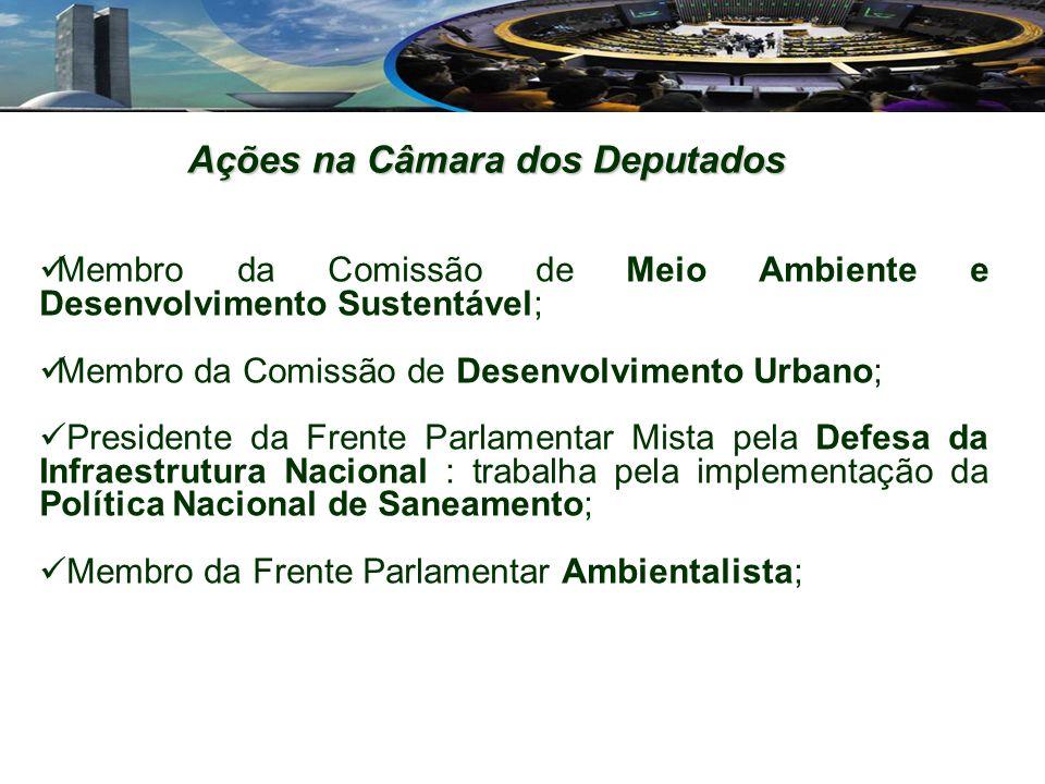 Membro da Comissão de Meio Ambiente e Desenvolvimento Sustentável; Membro da Comissão de Desenvolvimento Urbano; Presidente da Frente Parlamentar Mist