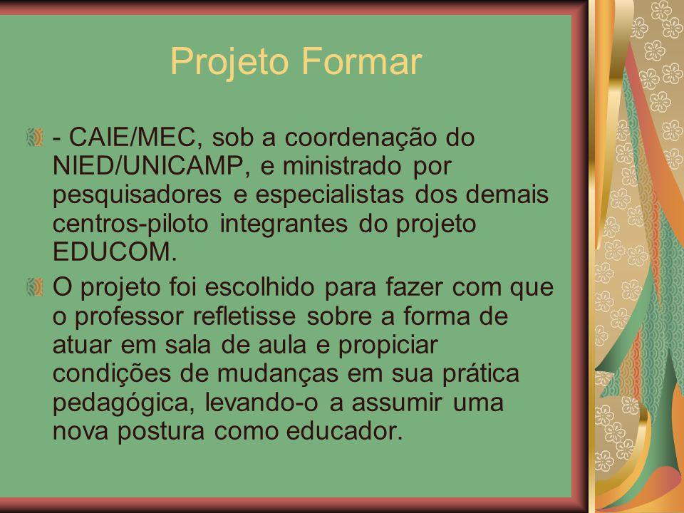 Projeto Formar - CAIE/MEC, sob a coordenação do NIED/UNICAMP, e ministrado por pesquisadores e especialistas dos demais centros-piloto integrantes do
