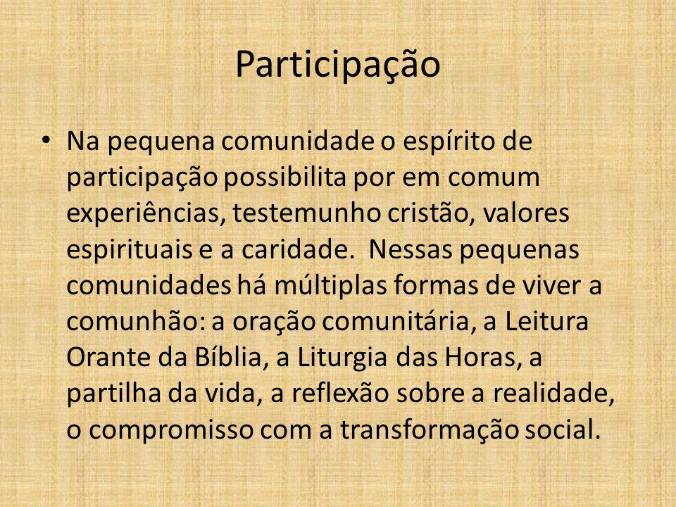 Participação Na pequena comunidade o espírito de participação possibilita por em comum experiências, testemunho cristão, valores espirituais e a carid