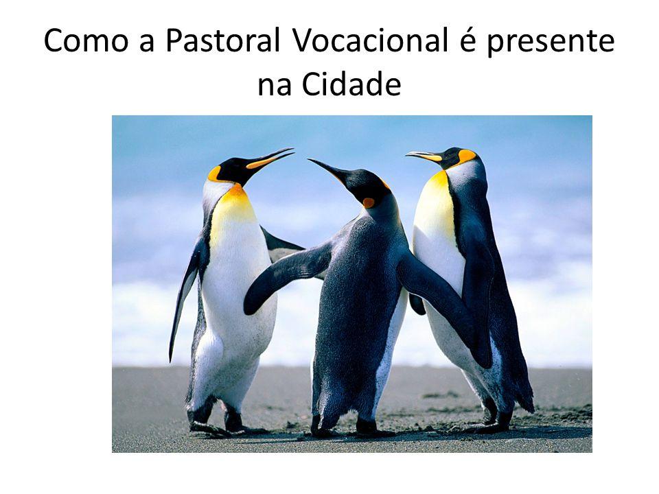 O papel da Pastoral Vocacional